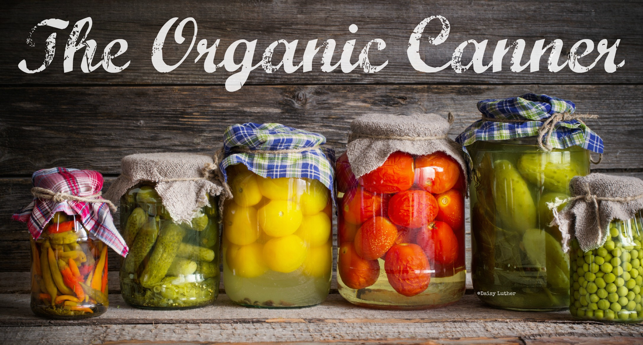 the organic canner a guide to preserving real food