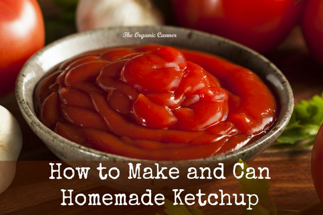 How to Make and Can Homemade Ketchup The Organic Canner